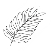 palm leaf 2.png