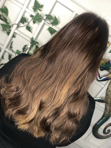 hair extensions bonds paisley