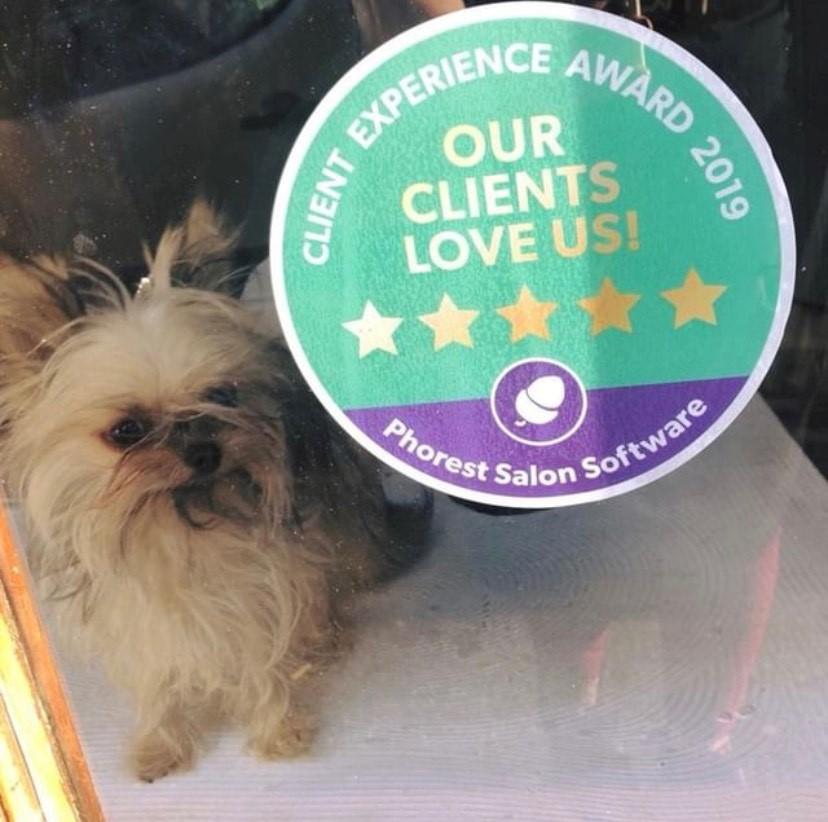 cleint experience award