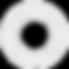 LYNCEUS-LOGO_edited_edited.png