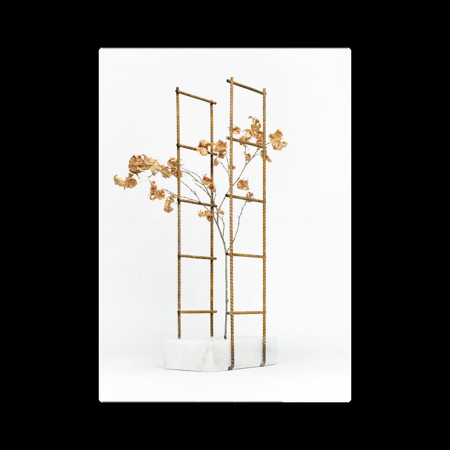 Perpetua vase #2 / 2018  White Carrara marble, iron mesh h50 l20 w10 cm