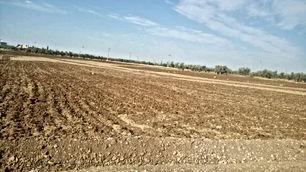 ارض للبيع في اربد منطقة حور 832 م سكن ب بسعر مغري من المالك مباشرة