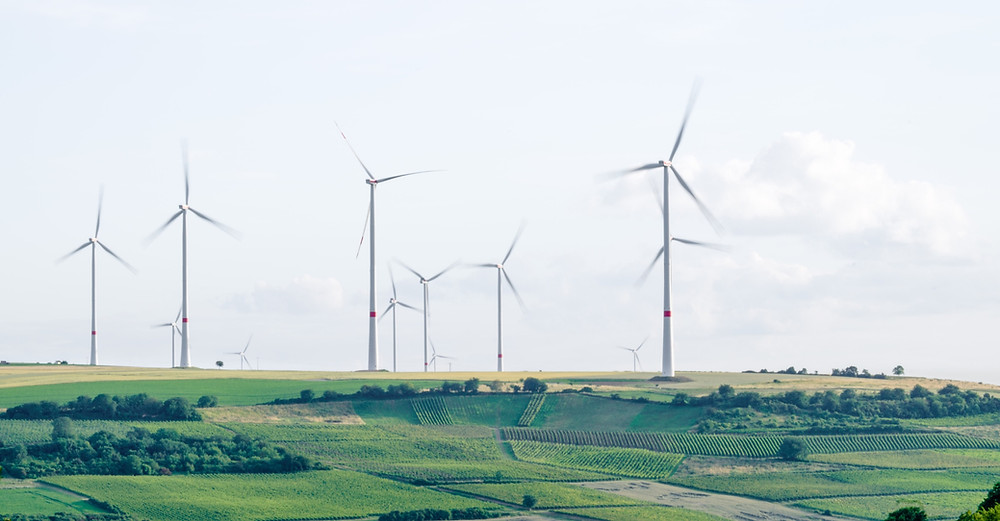 wind turbines on green fields