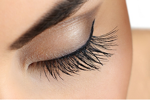 Russian Volume Lash Extensions Editable Training Manual