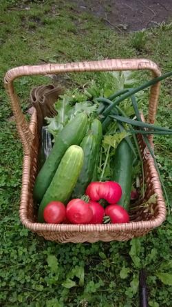 Zomerse groentenmand
