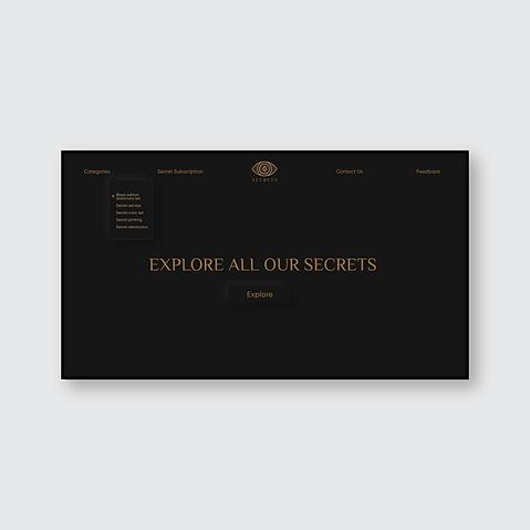 dribbble post secret 02.png