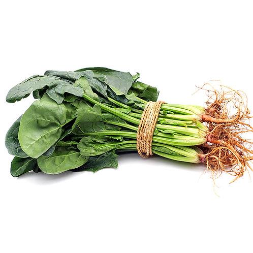 綠莧菜/半斤