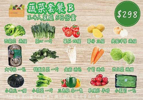 蔬菜套餐B (五天份)