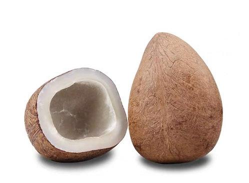 印度椰子/1個