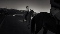 The-Horse-Rider