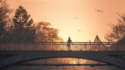 The-Girl-On-The-Bridge