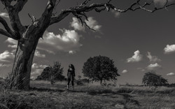 The-Tree-The-Woman-and-The-Sky_03