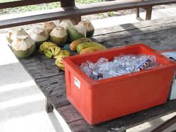 Bike Borneo cooler box