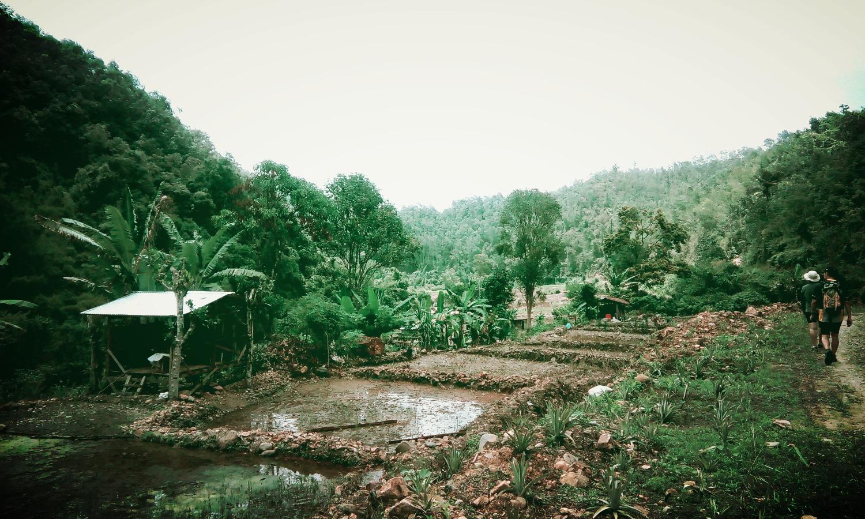 Bike Borneo trekking 2