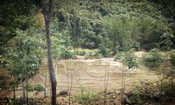 Bike Borneo trekking 4