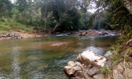 Kiulu River 2