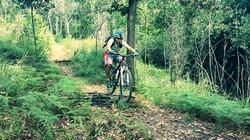 Bukit Kusai fly hill