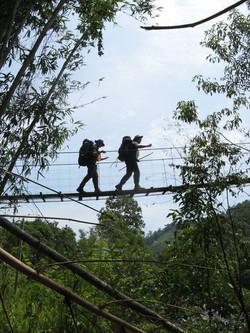Bike Borneo rope bridge