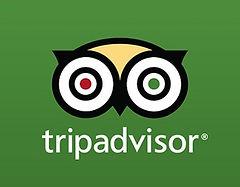 Bike Borneo Tripadvisor reviews