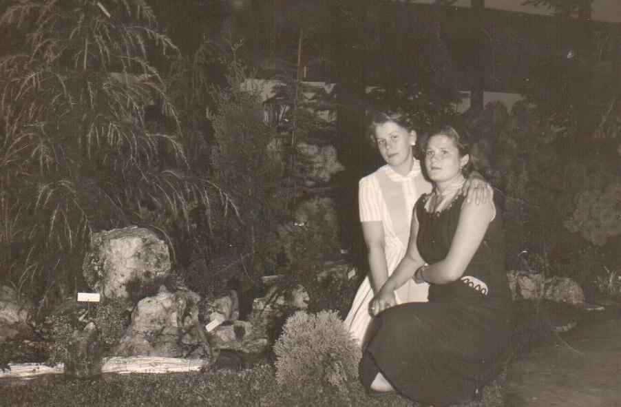 1953 dahliatentoonstelling j dufour 1.jp