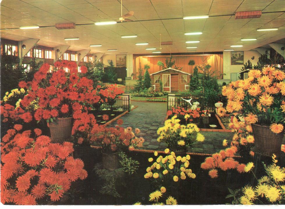 floralien 1500 m2 centrum deweer.jpg