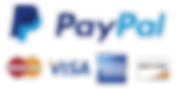 PayPal-PNG-Download-Image.png