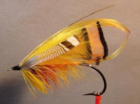 Orange Parson (T.E. Pryce-Tannatt)