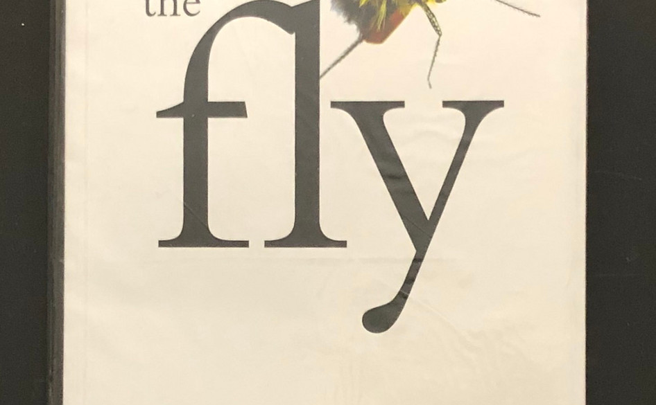 The Fly (2003) by Andrew Herd