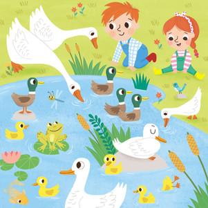 Busy Pond