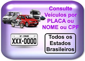 consulta placa.png