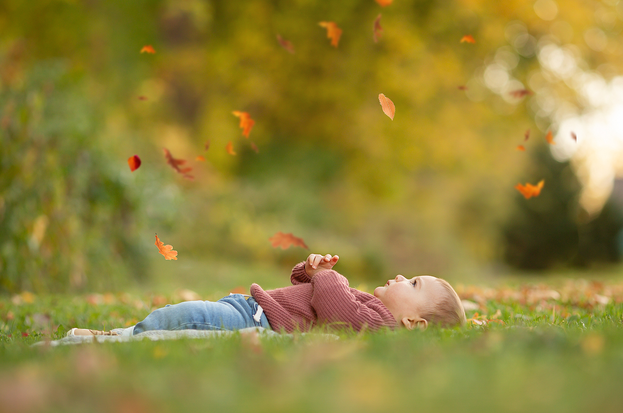 Portrait of Infant baby boy in fall