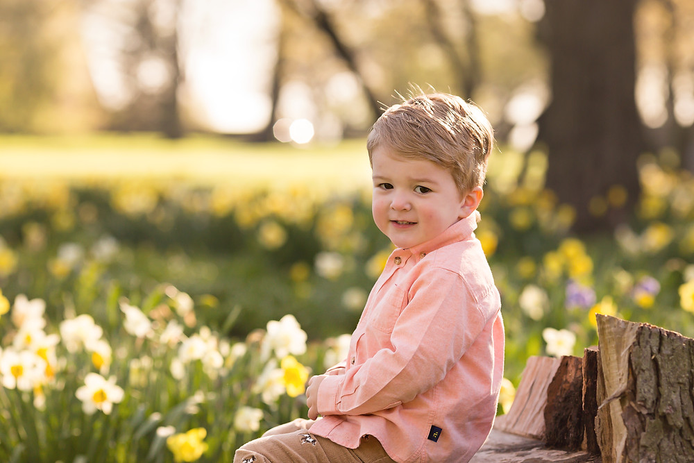 Metro Detroit boy in field of flowers