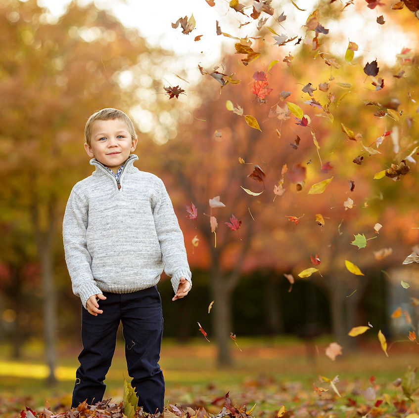 Grosse Pointe Fall Child Photography