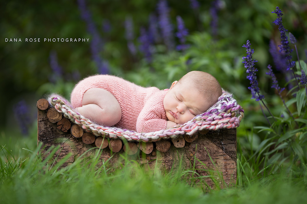 Grosse Pointe newborn in flower garden