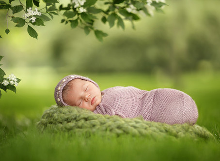 Welcome to the World Mia Rose | Grosse Pointe Farms Michigan | Newborn Photography