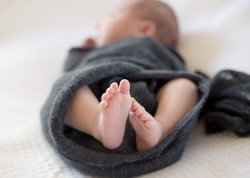 Little Feet by Grosse Pointe Newborn