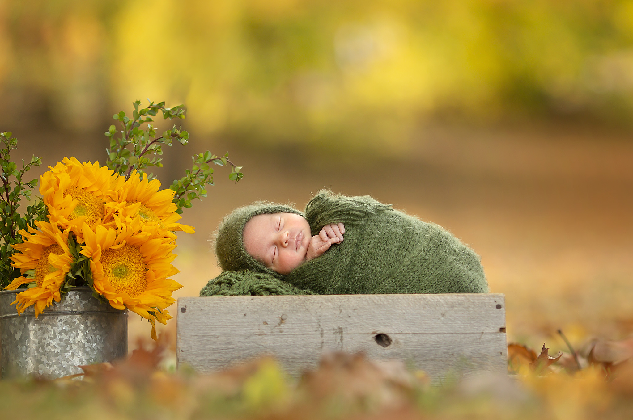 October Outdoor newborn photo