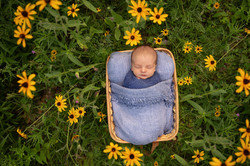 Detroit Outdoor Newborn Photo