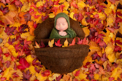 Fall Outdoor Newborn Photography