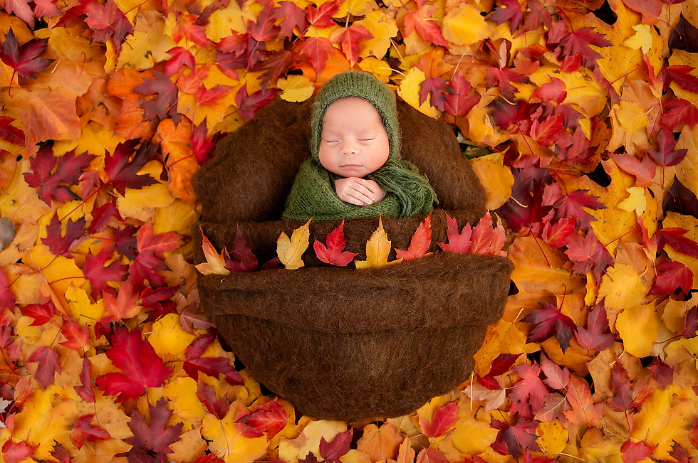 detroit fall outdoor newborn photography