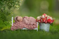 Michigan Outdoor Newborn Photography