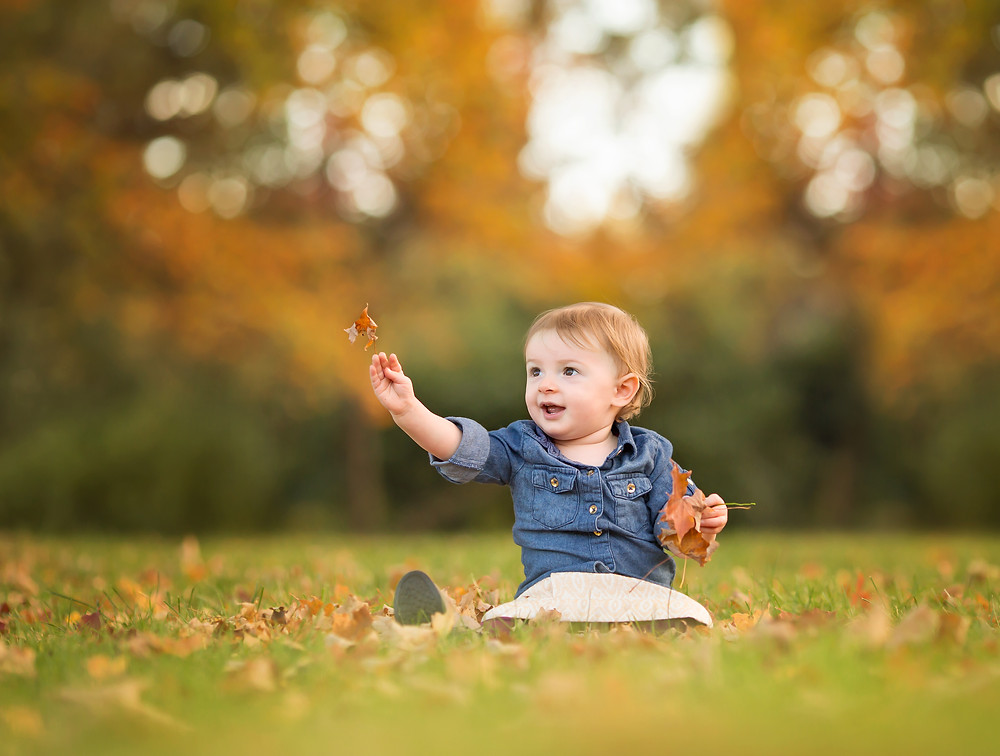 Royal Oak Baby in Fall