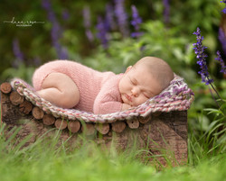 Detroit Outdoor Newborn Photography
