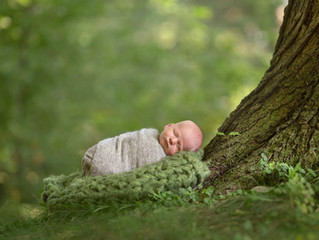 Metro Detroit Outdoor Newborn Photo Sessions
