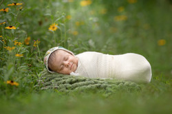 Metro Detroit Outdoor Newborn Photo Session