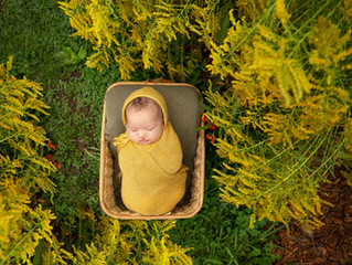 Detroit Outdoor Newborn Photo Session