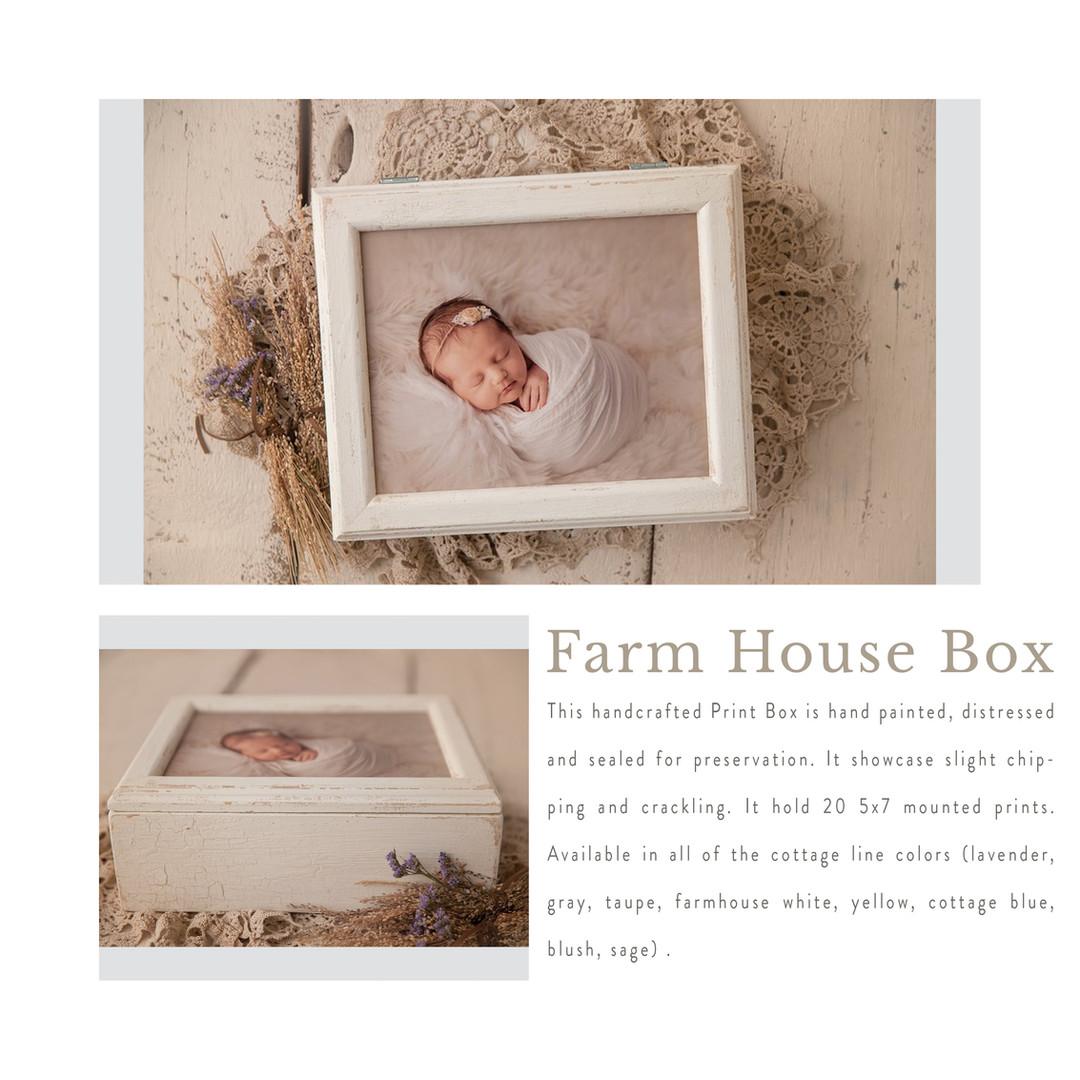 Farm house box.jpg
