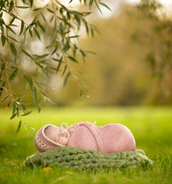 Detroit Outdoor Newborn Photography