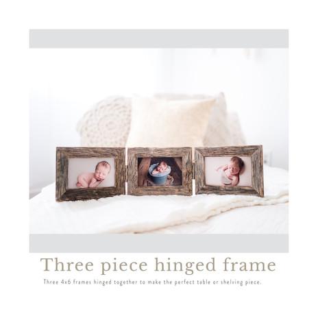 hinged frame.jpg