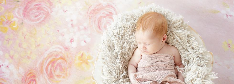 St Claire Shores Newborn